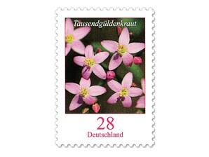 """Bild Briefmarke """"Tausendgüldenkraut"""" - Dauerserie Blumen 28 ct"""