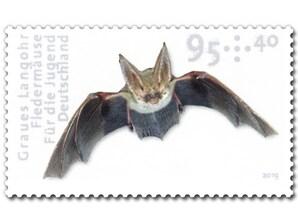 "Bild Briefmarke ""Fledermäuse - Graues Langohr"" 0,95 EUR + 0,40 EUR"