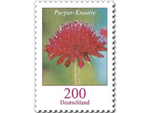 Purpur-Knautie, Briefmarke zu 2,00 ?, 10er-Bogen