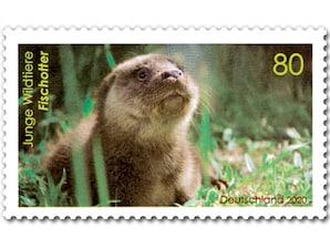 Junge Wildtiere Fischotter, Briefmarke zu 0,80 EUR, 10er-Bogen
