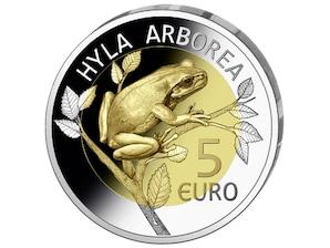 """5 Euro Silber 2017 """"Europäischer Laubfrosch"""""""